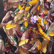 Paintings of Leaves by Julie Cane